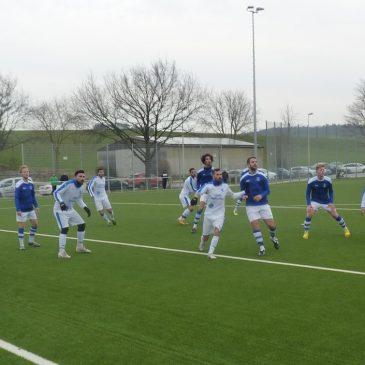 Herles VfB Vorschau