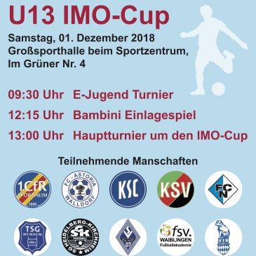 U13 IMO-Cup im Grüner